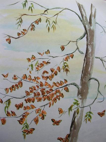 Butterfly_book_2